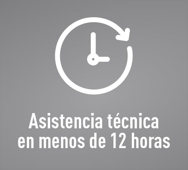 Asistencia en 12 horas - Lineto